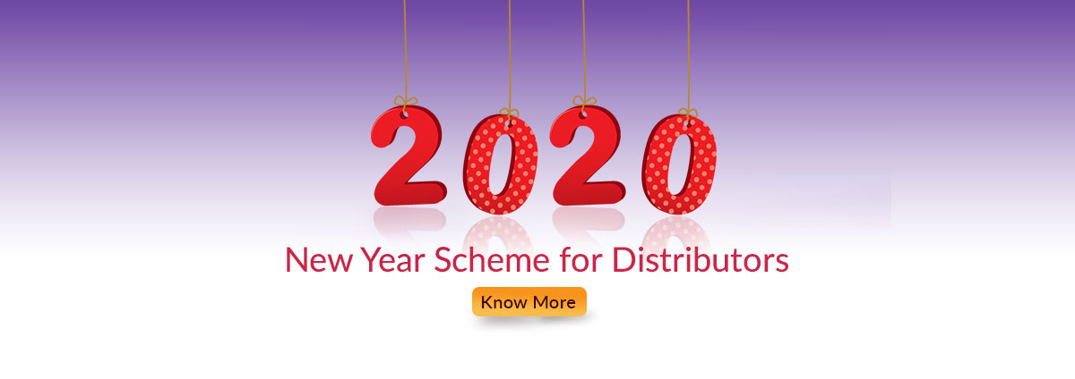 New Year Distributor Schemes